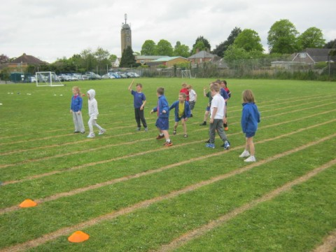 Cricket in Year 2